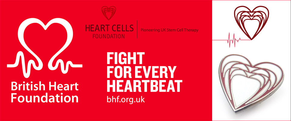 premium enamel lapel pins personalised for the BHF.